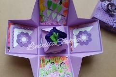 scatole-explosion-box00017